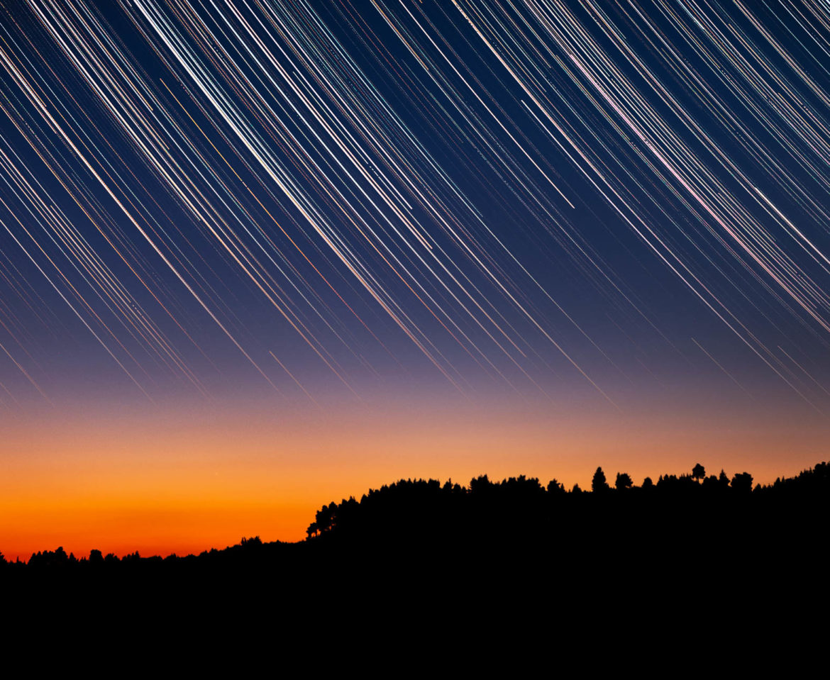 Star trails over tree silhouettes