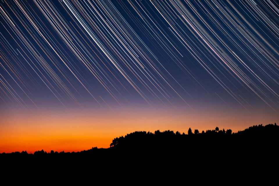 Startrails over trees silhouettes